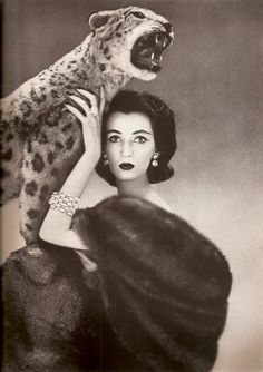 Dovima - 1950 - Photo by Richard Avedon (American, 1923-2004) - Harper's Bazaar - @~ Mlle