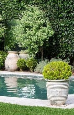 pots around the pool more landscaping around patioswimming - Garden Ideas Around Swimming Pools