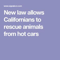 New law allows Californians to rescue animals from hot cars