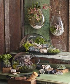 Embrace the art of indoor gardening with these fascinating terrariums from Roost.  Each piece is made of blown recycled glass...