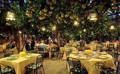 Eat under a grove of lemons at Da Paolino in Capri, Italy;    http://3.bp.blogspot.com/_ZeY5zxyGNHc/SrErwgalJyI/AAAAAAAABtc/p0XBB_SZC0Q/s400/capri.jpg