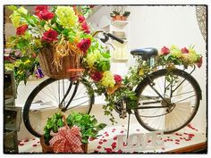 display props in plants and flowers - Google Search