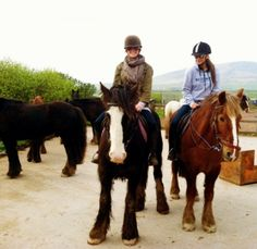 askfjskd totally in loveee!! the horses...and @shaymitch...omg <3 <3 RT Longs Riding Stables
