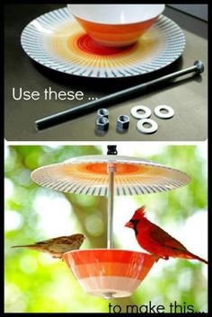 Cute homemade bird feeder