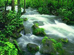 extraordinary sceneries of nature | Amazing pictures of nature scenery |Funny & Amazing Images