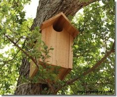 Owl House Plans - These Unique Bird House Plans are Designed Specifically for a . - Owl House Plans – These Unique Bird House Plans are Designed Specifically for a Screech Owl or Bo - Bird House Plans, Bird House Kits, Owl House, Woodworking Furniture, Woodworking Projects, Woodworking Shop, Woodworking Machinery, Woodworking Jointer, Owl Box