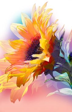 Lara Skinner Autumn Sunflower Drawing Watercolour Paintings Art