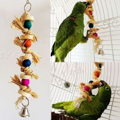 Colorful Swing Bird Toy Parrot Rope Harness Cage Toys Parakeet Cockatiel Budgie in Pet Supplies, Birds, Toys | eBay
