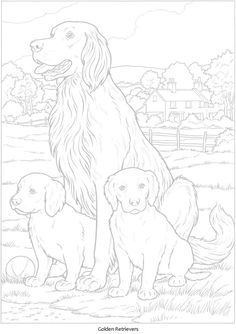 Dogs to Paint or Color Dover Publications