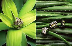Salt / photographer: Mitch Feinberg #stilllife #jewelry #objects