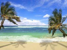 Visita las hermosas playas de Capurgana en Acandi Choco, Muy cerca de la frontera con Panamá.
