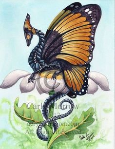 Dragon with butterfly wings by Carla Morrow