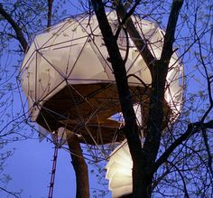 Geodesic dome tree house!