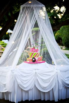 Great way to keep bugs away from your cake!!!