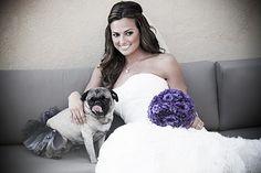 Bride and her pug in a tutu <3
