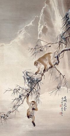Gao Qifeng Monkeys and Snowy Pine 1916 Hong Kong Museum of Art Japanese Painting, Chinese Painting, Japanese Prints, Japanese Art, Animal Paintings, Animal Drawings, Art Et Nature, Asian Artwork, Monkey Art