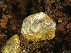 Chabazite var. Phacolite. Rytina soutěska, Czech republic Taille=4 mm Photo Petr Fuchs