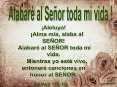 """JESUS PODEROSO GUERRERO: Salmos 146:1-2~~~~"""" Alabare al Señor toda mi Vida """""""