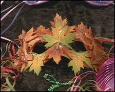 inspiration for a polymer clay leaf mask. Looks easy enough.