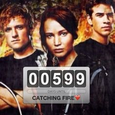Only 599 days until Catching Fire! Hunger games obsession!