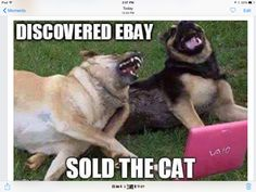 Sold the cat...job well done!!!