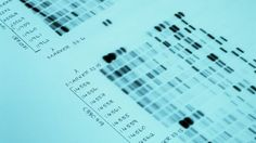 DNA profiling: good news, bad news, and everything in between.