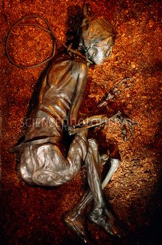 From Rosalia Lombardo to John Torrington and the Wet Mummies of China, here are the world's best-preserved examples, with photos. Tollund Man, Mummified Body, Bog Body, Braided Leather, Real People, Preserves, Rosalia Lombardo