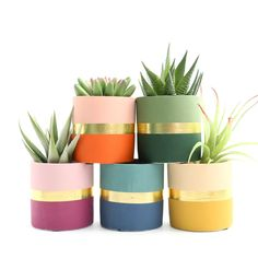 Small Color Blocked Cement Planter - Fall Colors - These cement planters are perfect for succulents or small cacti. Color blocked with a band of metal - Indoor Planters, Diy Planters, Succulent Planters, Garden Planters, Tall Planters, Modern Planters, Flower Planters, Recycled Planters, Hanging Planters