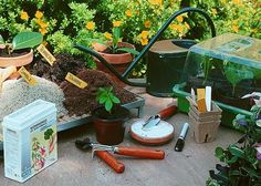 Bouturer pour multiplier au jardin sans se ruiner - F. Marre - M. Marcat - Rustica