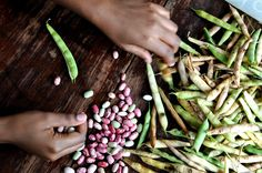 A Harvest Story + Fresh Bean Soup | Rare Beauty #uganda