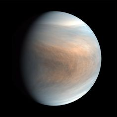 Life on Venus? The Picture Gets Cloudier - The New York Times Carl Sagan, Cardiff, Venus Images, Jupiter Y Saturno, Radio Astronomy, Learn Astrology, Greenhouse Effect, Closer To The Sun, Space Exploration