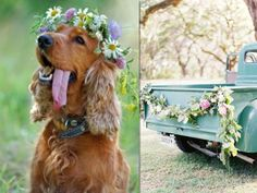Que fofo o cachorro, o jeep... O poder das flores e detalhes que personalizam um casamento romântico no campo! Veja outros casamentos no campo no blog Mother of The Bride!