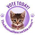 Friends of Felines Rescue Center - A non-profit, cage free, no-kill feline care facility located in Defiance, Ohio.