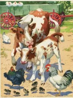 ART~ Vintage Large Colourful Mother Cow And Calf, Interfering With The Hens And Their Chicks~ Barnyard illustration Used As A Book Print~ George Trimmer~ via Etsy. Vintage Farm, Vintage Wall Art, Vintage Posters, Illustrations, Illustration Art, Farm Images, Farm Art, Cow Painting, Chicken Art