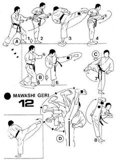 Mawashi Geri ] :: Roland Habersetzer -Le Karate- ::