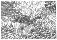 zentangle under the sea sea shade, art work, artzentangl 10black, seas, under the sea doodle, zen doodl, draw class, zentangl idea