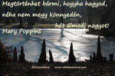 Álmodj nagyot! - Dream big! Mary Poppins, Dream Big, Movies, Movie Posters, Films, Film Poster, Cinema, Movie, Film