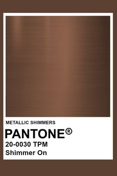 Shimmer On #Metallic #Pantone #Color Pantone Swatches, Color Swatches, Pantone Colour Palettes, Pantone Color, Brown Pantone, Color Plan, Colour Board, Metallic Colors, Color Schemes