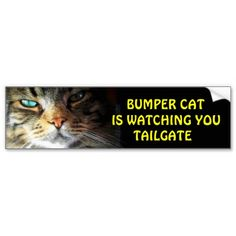 "Bumper Cat is watching TAILGATE 2 Angel has just the right look for ""Bumper Cat"" it seems because this one, in a series of bumper cat is watching you, is outselling all the others combined. My second most sold bumper sticker."
