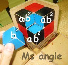 INFO - Binomial cube and algebraic equation