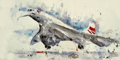 Concorde Aeroplanes, Concorde, Whale, The Past, Animals, Art, Art Background, Whales, Animales