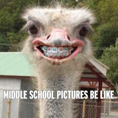 Middle School pictures...