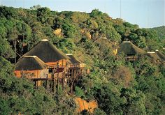 Ravineside Lodge| Specials 4 Africa