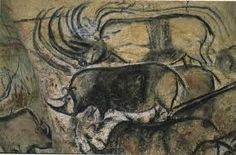 animali di potere rinoceronte - Cerca con Google