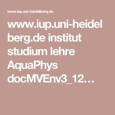 www.iup.uni-heidelberg.de institut studium lehre AquaPhys docMVEnv3_12…