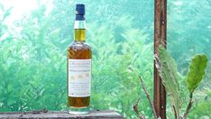 A refined and smoky whisky, from France of all places Fine Wine And Spirits, Japanese Whisky, Whisky Tasting, Bottle Shop, French Oak, Scotch Whisky, Bourbon, Grape Vines, Whiskey Bottle