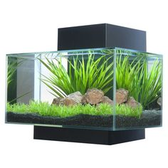 "Features:  -Suitable for fish and aquatic plants.  -21 LED lights.  -Fish can be fed through the opening in the top.  -Not recommended for salt water.  -Aquarium can accommodate two 3"" fish.  -It is r"