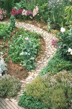 The narrow path is perfect for a leisurely inspection of the garden.