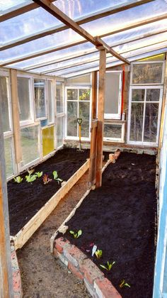 My old window green house