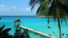 The Perhentian Islands in Malaysia are fringed by white sand beach, and the reefs and crystalline water are host to a wide variety of coral, sea-turtles, jellyfish, small sharks and reef-fish.